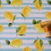 jersey fit antiuv lemons Tissu Maillot