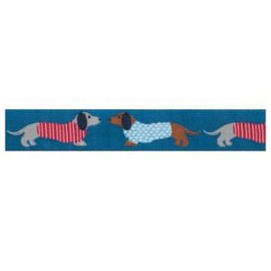 ruban chien basset fond bleu