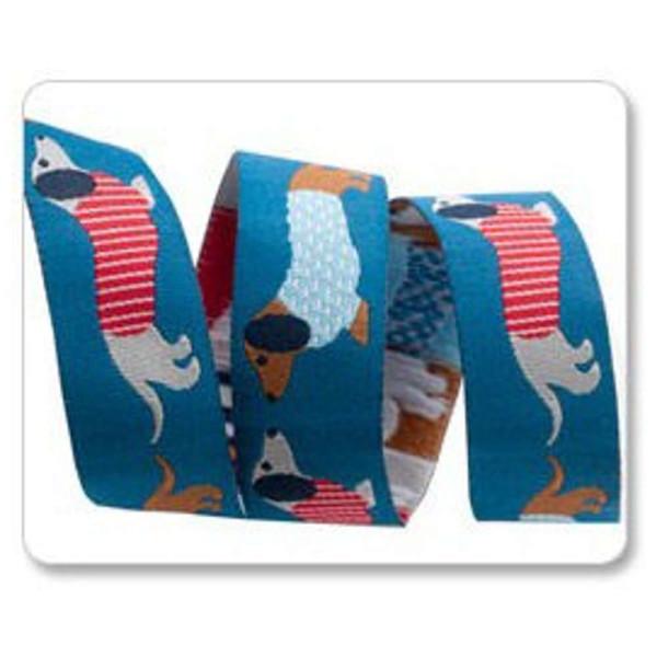 ruban chien basset fond bleu tendance